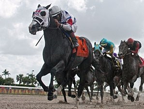 Bahamian Squall wins the 2013 Smile Sprint Handicap.
