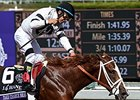 "Take Charge Brandi<br><a target=""blank"" href=""http://photos.bloodhorse.com/BreedersCup/2014-Breeders-Cup/Juvenile-Fillies/i-qFN8cKG"">Order This Photo</a>"