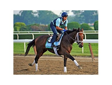 Overanalyze