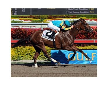 "Swale winner Eaton's Gift takes on an inexperienced field in the Amsterdam Stakes.<br><a target=""blank"" href=""http://www.bloodhorse.com/horse-racing/photo-store?ref=http%3A%2F%2Fpictopia.com%2Fperl%2Fgal%3Fprovider_id%3D368%26ptp_photo_id%3D3467355%26ref%3Dstory"">Order This Photo</a>"