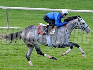 Turallure works at Keeneland 10/24/2011.