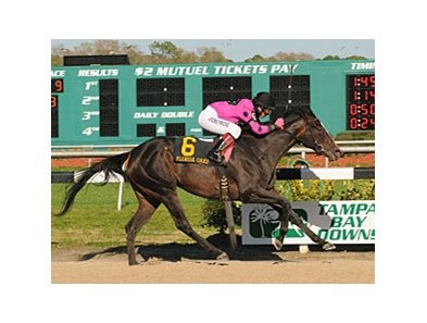 Diva Delite keeps her winning streak alive with a victory in the Florida Oaks.