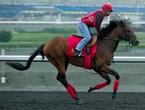 Up With the Birds Favored in Queen's Plate