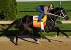 "West Side Bernie works at Churchill Downs on April 25.<br><a target=""blank"" href=""http://www.bloodhorse.com/horse-racing/photo-store?ref=http%3A%2F%2Fpictopia.com%2Fperl%2Fgal%3Fprovider_id%3D368%26ptp_photo_id%3D8040106%26ref%3Dstory"">Order This Photo</a>"