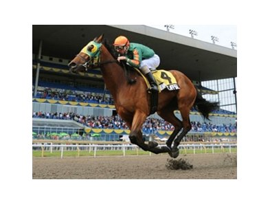 Milwaukee Appeal captures the Woodbine Oaks at Woodbine.