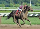 "Jackson Bend flies home in the Forego at Saratoga.<br><a target=""blank"" href=""http://www.bloodhorse.com/horse-racing/photo-store?ref=http%3A%2F%2Fpictopia.com%2Fperl%2Fgal%3Fprovider_id%3D368%26ptp_photo_id%3D9655009%26ref%3Dstory"">Order This Photo</a>"