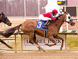 Lacie Slew wins the 2012 Maryland Racing Media Stakes.