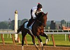 "Orb<br><a target=""blank"" href=""http://photos.bloodhorse.com/TripleCrown/2013-Triple-Crown/Belmont-Stakes-145/29744699_jpqpwR#!i=2559159882&k=RvDLPK6"">Order This Photo</a>"