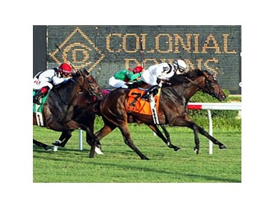 Nellie Cashman fights for the win in the Virginia Oaks.