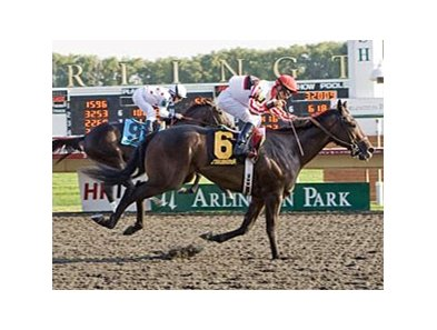 Shared Property won the Arlington-Washington Futurity in 2011.