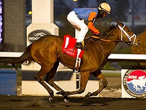 Mississippi Delta wins the 2014 Glorious Song Stakes.