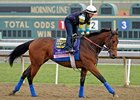 Executiveprivilege