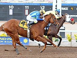 Omar wins the 2014 Klaq Handicap.