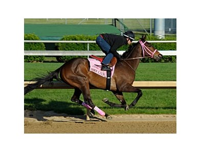 "Oaks Lily worked a half-mile in :49 2/5 at Churchill Downs on April 27.<br><a target=""blank"" href=""http://photos.bloodhorse.com/AtTheRaces-1/at-the-races-2012/22274956_jFd5jM#!i=1815794076&k=xHHNktm"">Order This Photo</a>"