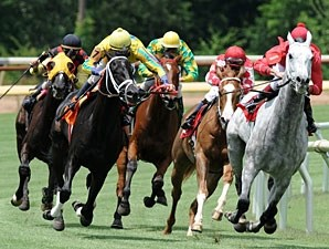 Grey Papillon wins the 2010 Louisiana Starter Cup Stakes.