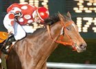 Scrappy Roo won the John B. Connally Turf Cup (gr. IIIT) at Sam Houston April 5 for trainer John Locke.
