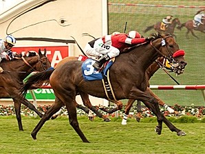 Norvsky wins the California Dreamin' Handicap.
