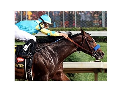 Bodemeister finished second in Kentucky Derby 138 after leading the field for most of the race.