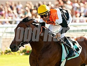 Enterprising wins the 2014 Oceanside Stakes.