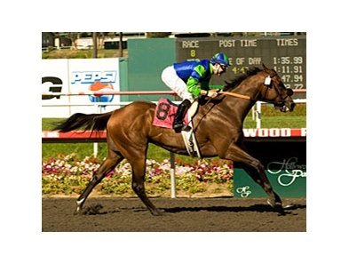 "Rail Trip won the 2009 Hollywood Gold Cup by three lengths.<br><a target=""blank"" href=""http://www.bloodhorse.com/horse-racing/photo-store?ref=http%3A%2F%2Fpictopia.com%2Fperl%2Fgal%3Fprovider_id%3D368%26ptp_photo_id%3D8320303%26ref%3Dstory"">Order This Photo</a>"