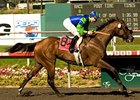 Rail Trip Powers Home in Hollywood Gold Cup