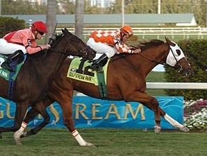 Presious Passion wins the 2009 Mac Diarmida.