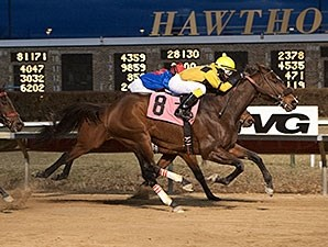 Luv Bandit wins the 2014 Lightning Jet Handicap.