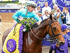 Lady Eli wins the 2014 Breeders' Cup Juvenile Fillies Turf.
