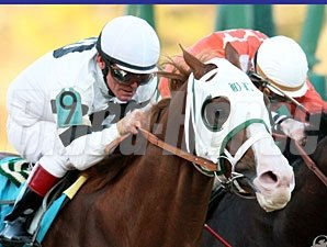 Will Take Charge wins the Smarty Jones Stakes.