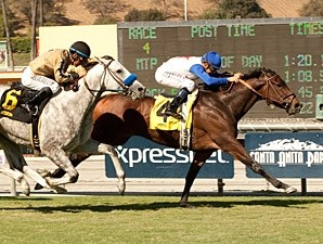 No Jet Lag wins the 2013 City of Hope Mile.
