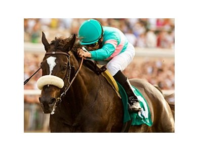 "Zenyatta<br><a target=""blank"" href=""http://www.bloodhorse.com/horse-racing/photo-store?ref=http%3A%2F%2Fpictopia.com%2Fperl%2Fgal%3Fprovider_id%3D368%26ptp_photo_id%3D9133268%26ref%3Dstory"">Order This Photo</a>"