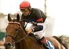 "The Usual Q.T. is the morning line favorite for the Pacific Classic. <br><a target=""blank"" href=""http://www.bloodhorse.com/horse-racing/photo-store?ref=http%3A%2F%2Fpictopia.com%2Fperl%2Fgal%3Fprovider_id%3D368%26ptp_photo_id%3D9116904%26ref%3Dstory"">Order This Photo</a>"