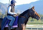 "Flotilla checks out the track at Santa Anita.<br><a target=""blank"" href=""http://photos.bloodhorse.com/BreedersCup/2012-Breeders-Cup/Works/26130247_gxH6nS#!i=2185430324&k=cK3HkS4"">Order This Photo</a>"