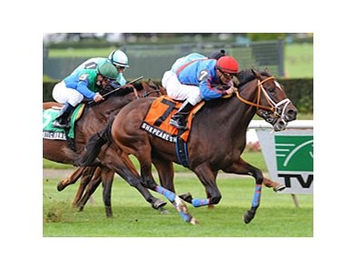 Shkspeare Shaliyah will face the field of seven for the Count Fleet Stakes.