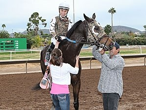 Rockin Home wins the 2014 Cactus Wren Stakes.