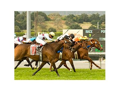 "Foxysox (right) holds off Black Mamba and I Can See to take the Santa Barbara.<br><a target=""blank"" href=""http://www.bloodhorse.com/horse-racing/photo-store?ref=http%3A%2F%2Fpictopia.com%2Fperl%2Fgal%3Fprovider_id%3D368%26ptp_photo_id%3D4231295%26ref%3Dstory"">Order This Photo</a>"