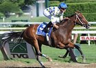 Dual grade I winner Champagne d'Oro will be sold at the Fasig-Tipton November sale.