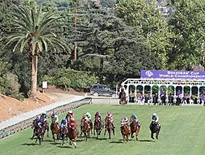 Bobby's Kitten wins the 2014 Breeders' Cup Turf Sprint.