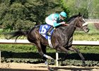 "Zenyatta remains unbeaten with a professional score in the Apple Blossom.<br><a target=""blank"" href=""http://www.bloodhorse.com/horse-racing/photo-store?ref=http%3A%2F%2Fpictopia.com%2Fperl%2Fgal%3Fprovider_id%3D368%26ptp_photo_id%3D4084697%26ref%3Dstory"">Order This Photo</a>"