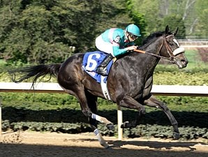 Zenyatta remains unbeaten with a professional score in the Apple Blossom.