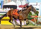 Last Gunfighter comes home strong to win the Pimlico Special.