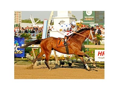 "Big Brown dominates the 2008 Preakness under Kent Desormeaux.<br><a target=""blank"" href=""http://www.bloodhorse.com/horse-racing/photo-store?ref=http%3A%2F%2Fpictopia.com%2Fperl%2Fgal%3Fprovider_id%3D368%26ptp_photo_id%3D4542731%26ref%3Dstory"">Order This Photo</a>"