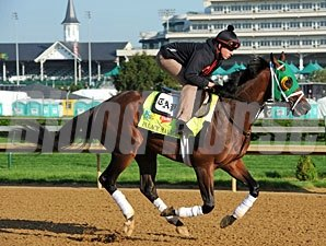 Palace Malice - Churchill Downs, May 1, 2013.