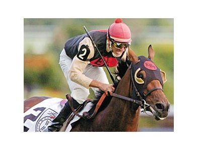 Rahy's Attorney, who won the King Edward Stakes in 2009, is back to defend his title in 2010.