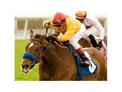 "Tuscan Evening recorded her fifth graded stakes win after capturing the Santa Ana Handicap.<br><a target=""blank"" href=""http://www.bloodhorse.com/horse-racing/photo-store?ref=http%3A%2F%2Fpictopia.com%2Fperl%2Fgal%3Fprovider_id%3D368%26ptp_photo_id%3D8850937%26ref%3Dstory"">Order This Photo</a>"