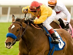 Tuscan Evening wins the 2010 Santa Ana.