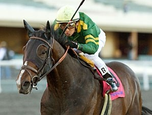 Soul Candy wins the 2010 California Cup Classic.