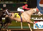 Diamond Stripes, winner of the 2007 Meadowlands Cup (gr. II).