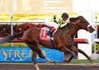 "Quality Road strides away in the Fountain of Youth.<br><a target=""blank"" href=""http://www.bloodhorse.com/horse-racing/photo-store?ref=http%3A%2F%2Fpictopia.com%2Fperl%2Fgal%3Fprovider_id%3D368%26ptp_photo_id%3D7832418%26ref%3Dstory"">Order This Photo</a>"