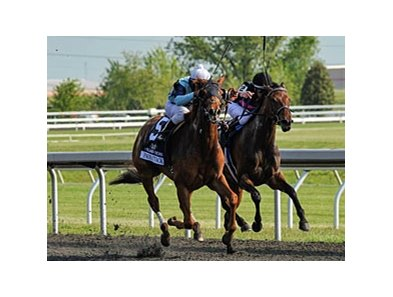 "Pachattach (left) outfinishes Kathmanblu to win the Doubledogdare at Keeneland.<br><a target=""blank"" href=""http://photos.bloodhorse.com/AtTheRaces-1/at-the-races-2012/22274956_jFd5jM#!i=1804183652&k=rFtWWqD"">Order This Photo</a>"